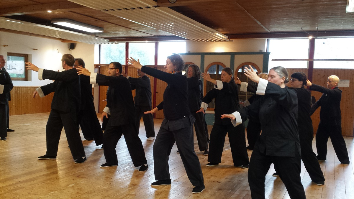 Tai Chi Form Brush knee
